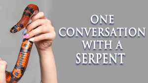 ONE CONVERSATION WITH A SERPENT 300X169